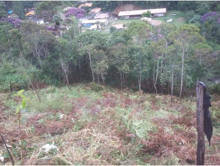 Terreno Residencial à venda em Quinta da Barra, Teresópolis - RJ - Foto 4