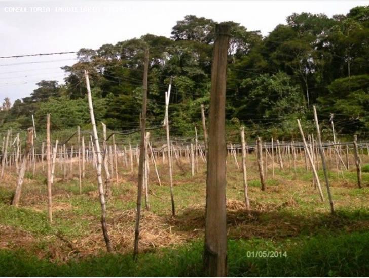 Fazenda / Sítio à venda em Ponte Nova, Teresópolis - RJ - Foto 20