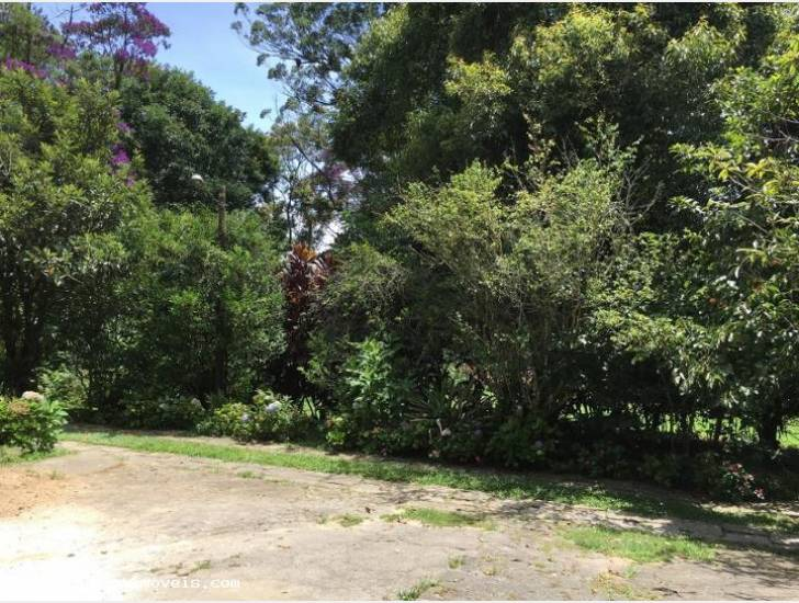 Terreno Residencial à venda em Alto, Teresópolis - RJ - Foto 3