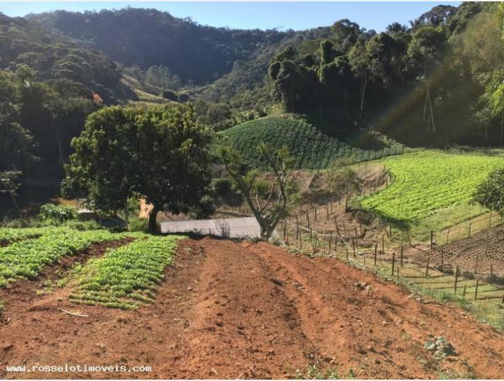 Fazenda / Sítio à venda em Gamboa, Teresópolis - RJ - Foto 10