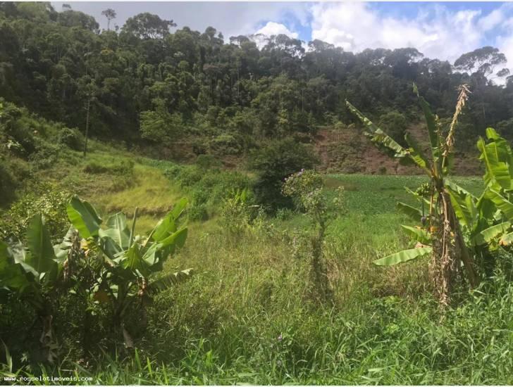 Terreno Residencial à venda em Campo Limpo, Teresópolis - RJ - Foto 1
