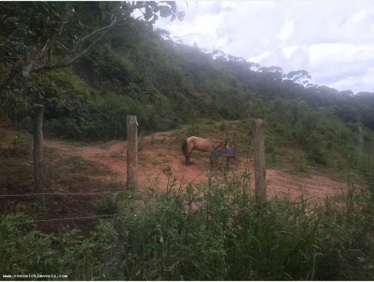 Terreno Residencial à venda em Campo Limpo, Teresópolis - RJ - Foto 5